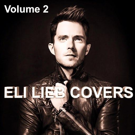 Eli Lieb альбом Eli Lieb Covers, Vol. 2