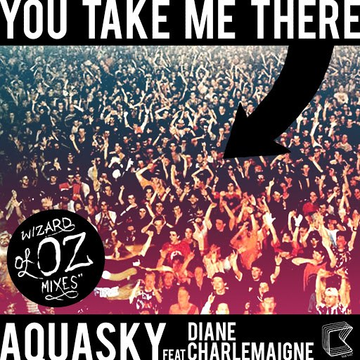 Aquasky альбом You Take Me There (feat. Diane Charlemagne) - Wizards Of OZ Mixes