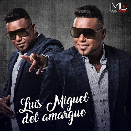 Luis Miguel Del Amargue альбом Los Mejores Exitos