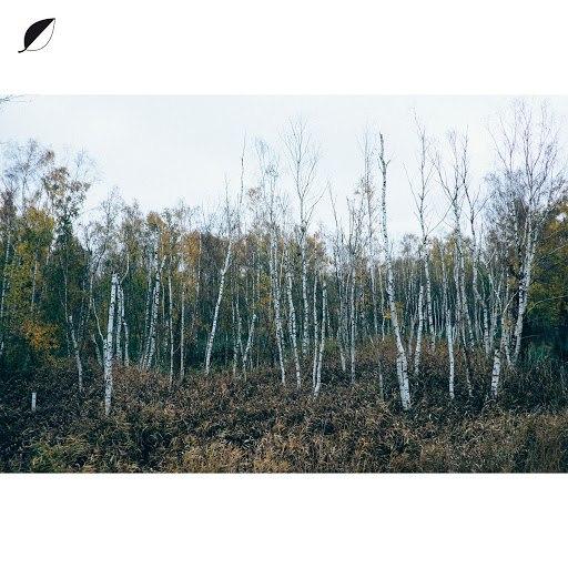 Christian Löffler альбом Haul (feat. Mohna) [Radio Edit]