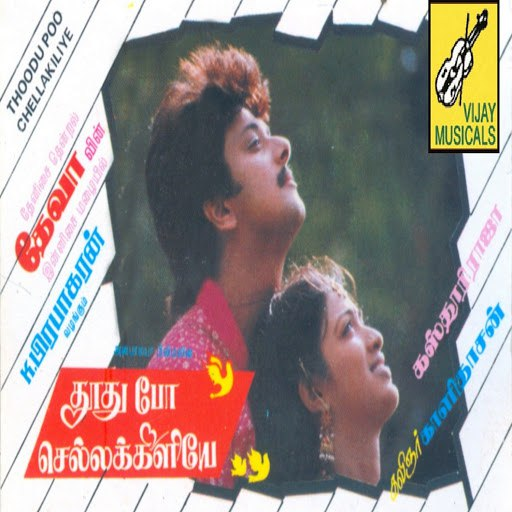 Deva альбом Thoodhu Po Chellakiliye (Original Motion Picture Soundtrack)