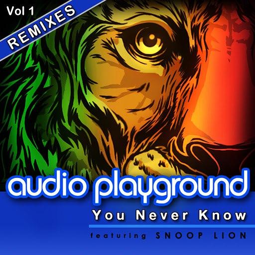 Audio Playground альбом You Never Know (feat. Snoop Lion) [Remixes, Vol. 1]