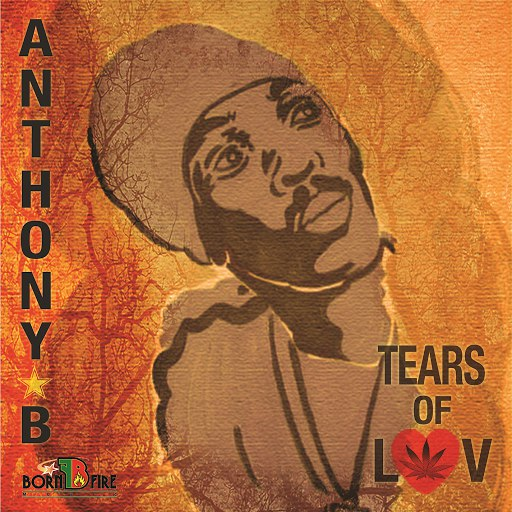 Anthony B альбом Tears Of Luv