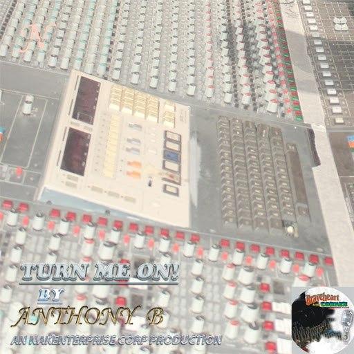 Anthony B альбом Turn Me On