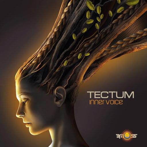 Tectum альбом Inner Voice