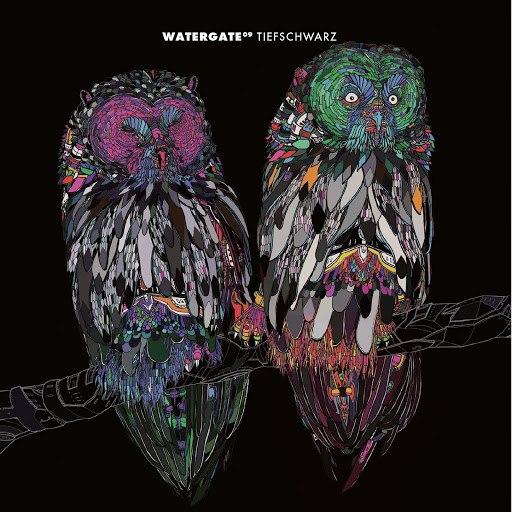 Tiefschwarz альбом Watergate 09 - mixed by Tiefschwarz
