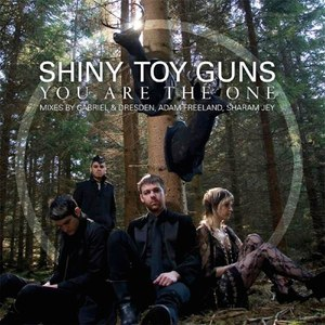 Shiny Toy Guns альбом You Are the One