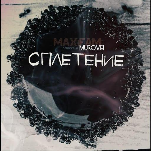 Maxifam альбом Сплетение