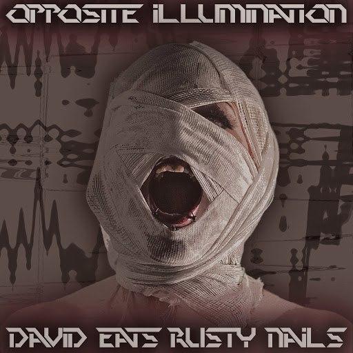 David Eats Rusty Nails альбом Opposite illumination
