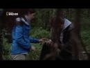 Детективы по делам животных 3. Лес с привидениями