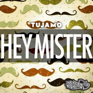 Tujamo альбом Hey Mister - Single