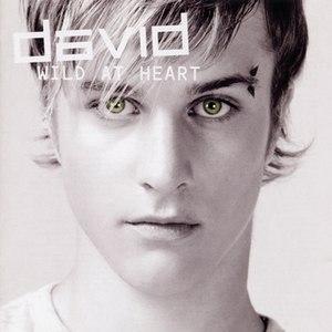 David альбом Wild At Heart