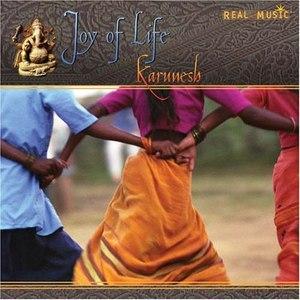 Karunesh альбом Joy Of Life