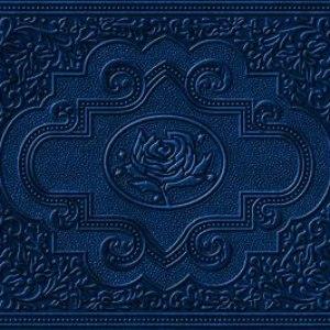 Ryan Adams альбом Cold Roses