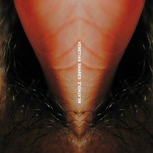 Venetian Snares альбом Meathole