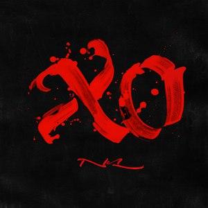 Nel альбом XO
