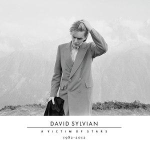 David Sylvian альбом A Victim of Stars 1982-2012