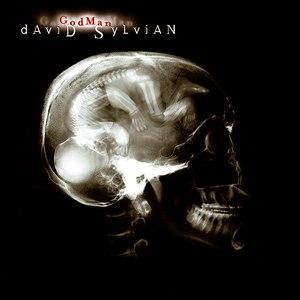 David Sylvian альбом Godman