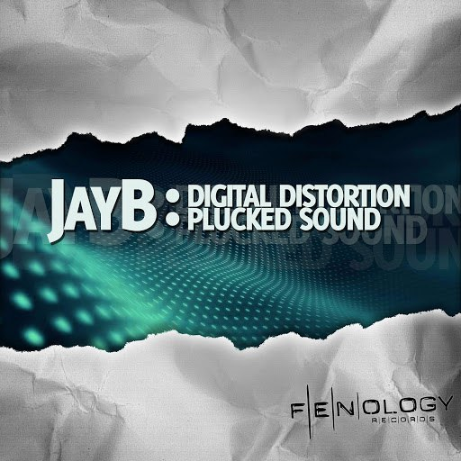 JayB альбом Digital Distortion / Plucked Sound