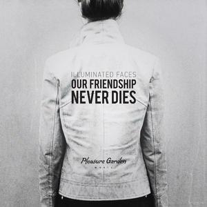 Illuminated Faces альбом Our Friendship Never Dies