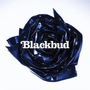 BlackBud альбом BlackBud