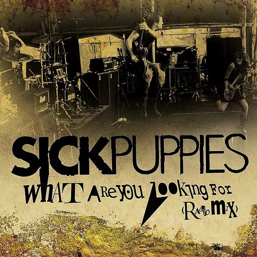 Sick Puppies альбом What Are You Looking For (Radio Mix)
