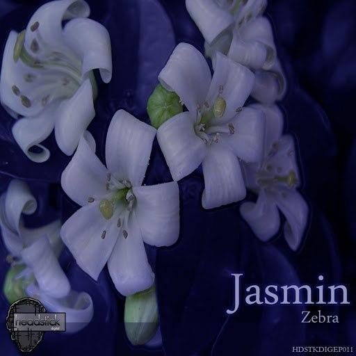 Жасмин альбом Zebra