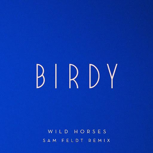 Birdy альбом Wild Horses (Sam Feldt Remix)