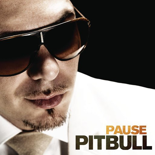 Pitbull альбом Pause