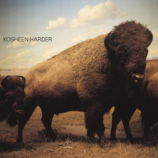 Kosheen альбом Harder