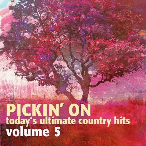 Pickin' On Series альбом Pickin on Today's Ultimate Country Hits Volume 5