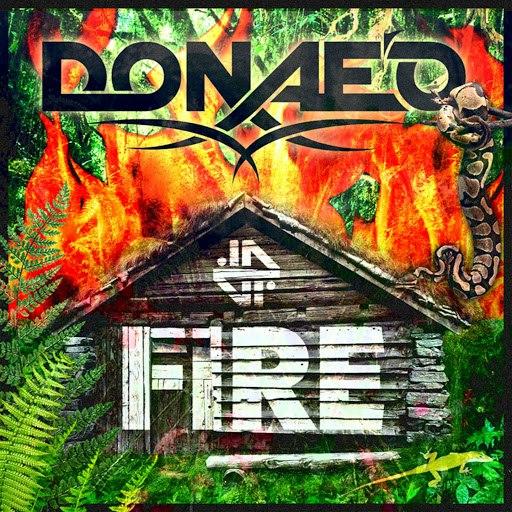 Donae'o альбом Fire
