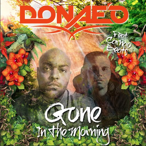 Donae'o альбом Gone in the Morning Remixes