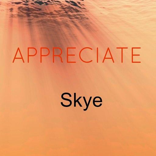 Skye альбом Appreciate
