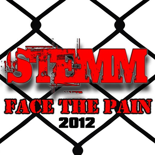 Stemm альбом Face The Pain 2012