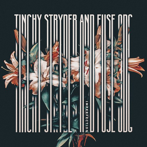 Tinchy Stryder альбом Imperfection - Mixes