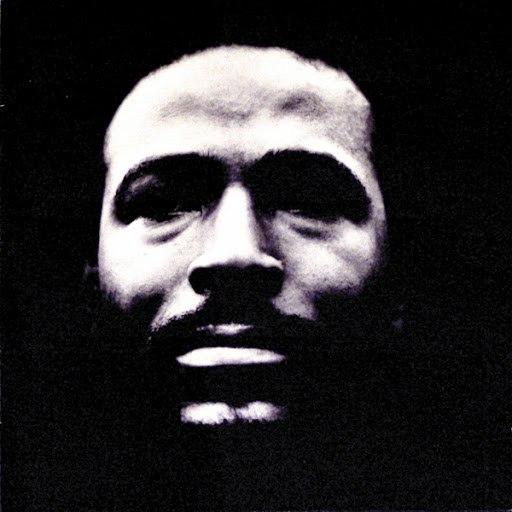 Marvin Gaye альбом Vulnerable