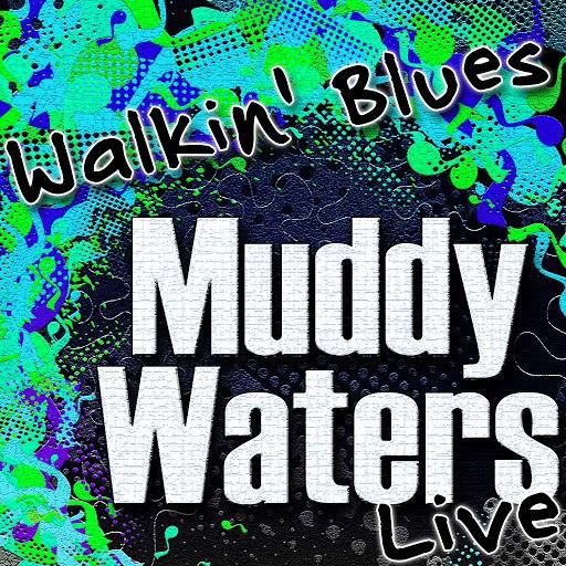 Muddy Waters альбом Walkin' Blues (Live)