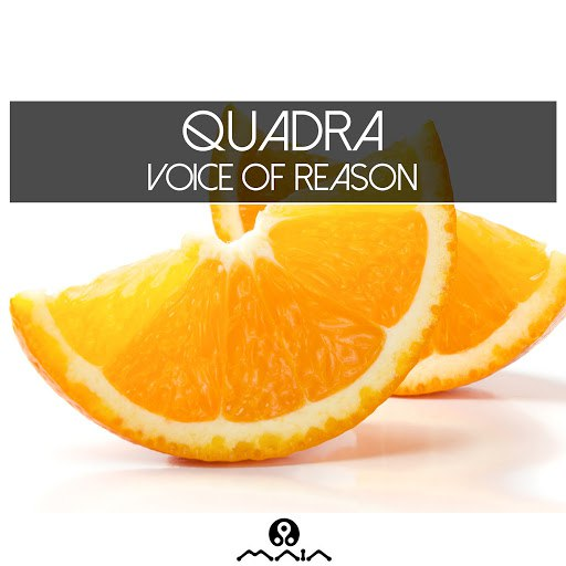 Quadra альбом Voice of Reason