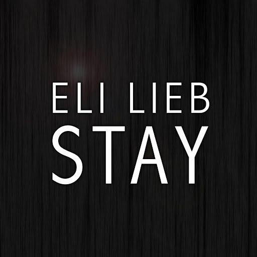 Eli Lieb альбом Stay