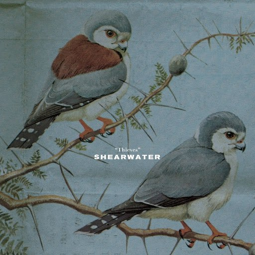 Shearwater альбом Thieves
