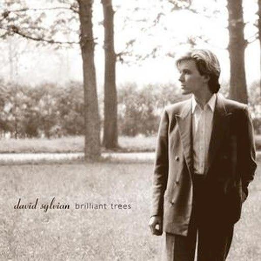 David Sylvian альбом Brilliant Trees (Remastered 2003)