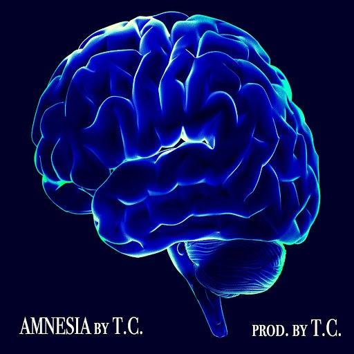 TC альбом Amnesia