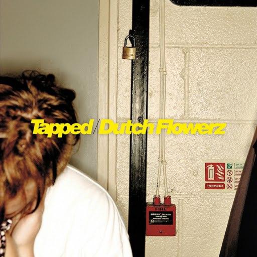 Skream альбом Tapped / Dutch Flowerz