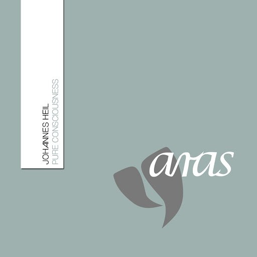 Johannes Heil альбом Pure Consciousness