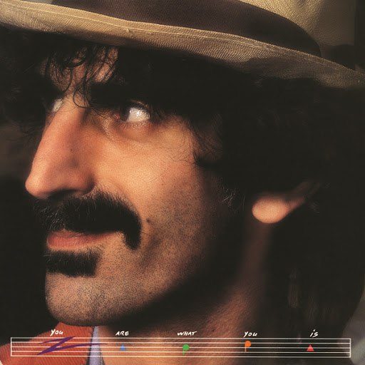 Frank Zappa альбом You Are What You Is