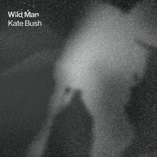 Kate Bush альбом Wild Man