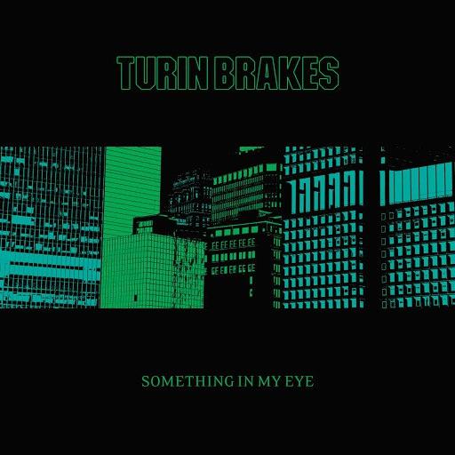 Turin Brakes альбом Something In My Eye
