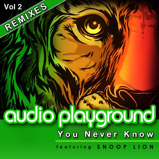 Audio Playground альбом You Never Know (feat. Snoop Lion) [Remixes, Vol. 2]