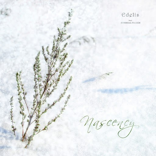 Edelis альбом Nascency (feat. Ethereal Pilgrim)